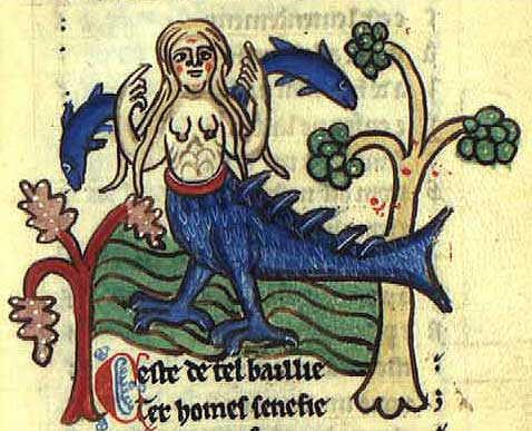 La Fleur De Lys Symbole Chretien Du Serpent